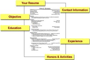 Resume 02